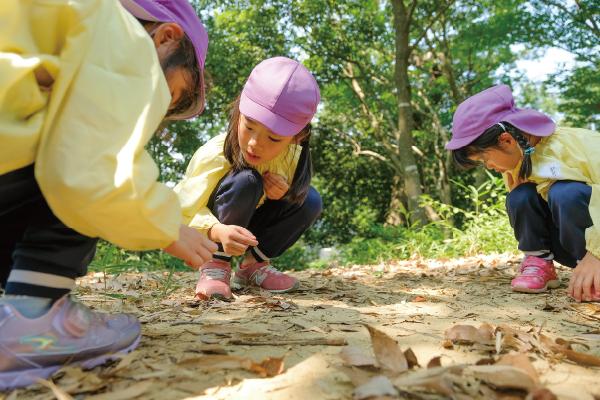 かのこ里山村保育写真02