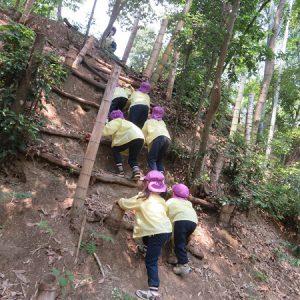 里山サマーキャンプ(5歳児)